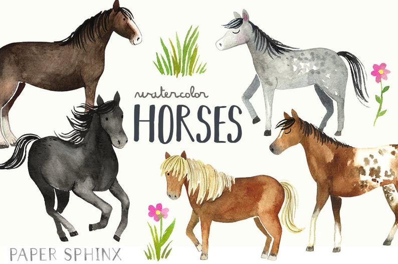 Horses and pony breeds. Clipart horse watercolor