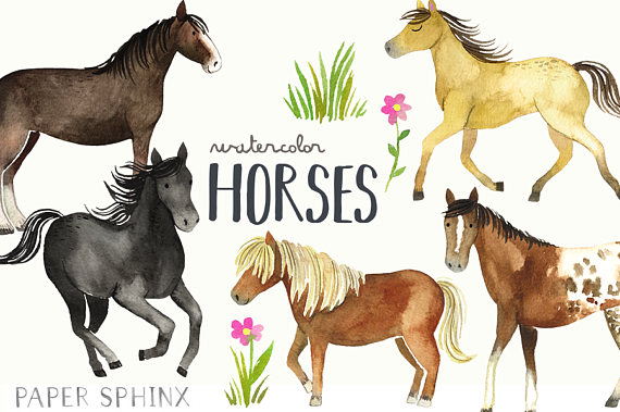 Bath clipart horse. Watercolor horses and pony