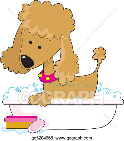 Stock illustration apricot drawing. Bath clipart poodle