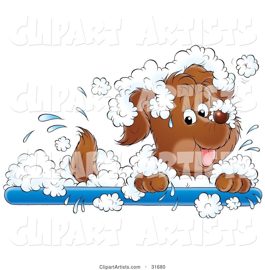 Bath clipart puppy. Playful dog splashing around