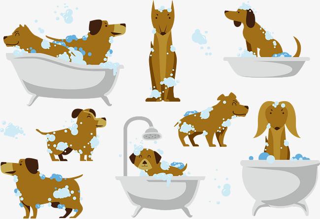 Bath clipart puppy. Vector dog a pet