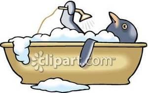 Penguin taking a hot. Bath clipart warm bath