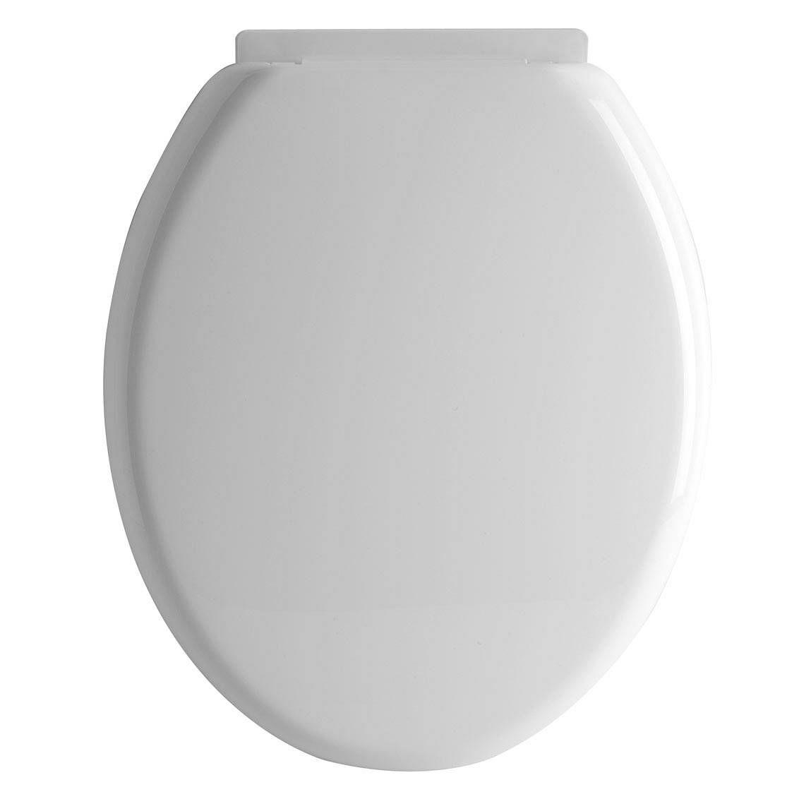 Toilet seat to entourage. Bathroom clipart top view