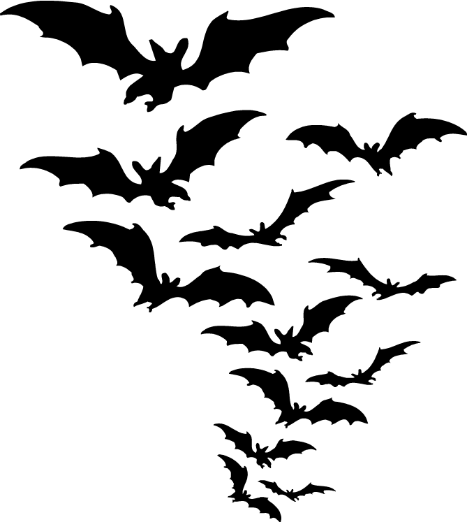 Group of transparent png. Bats clipart