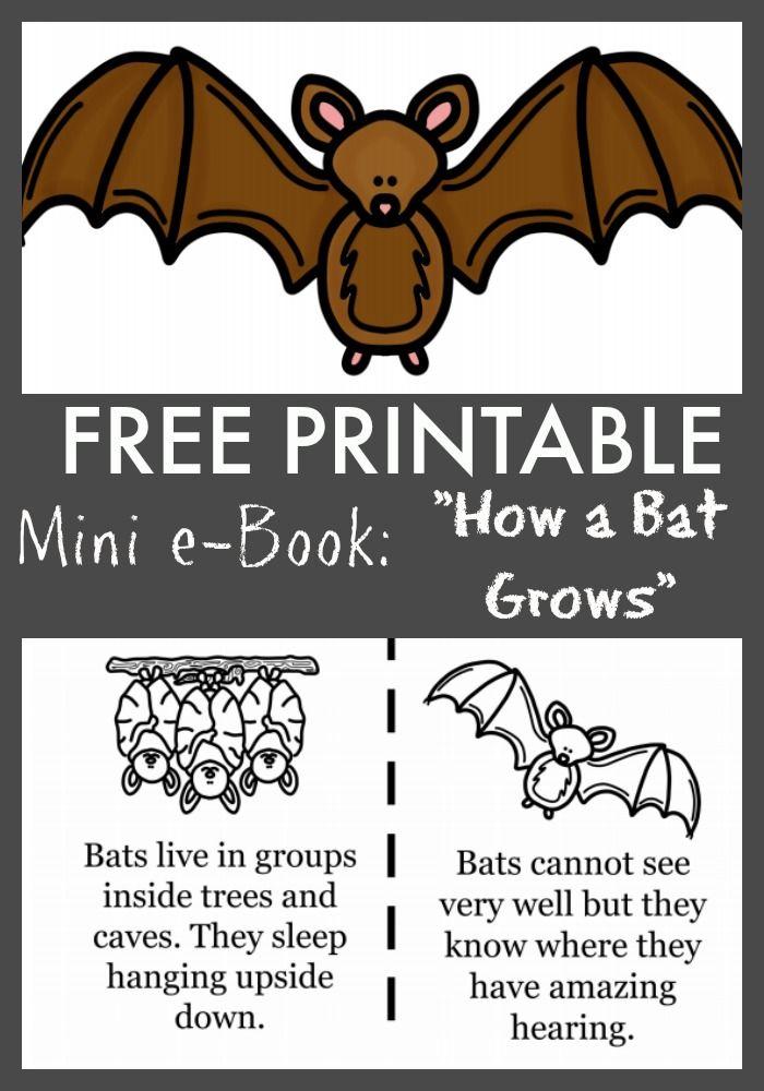 Bats clipart bat cave. Free how a grows