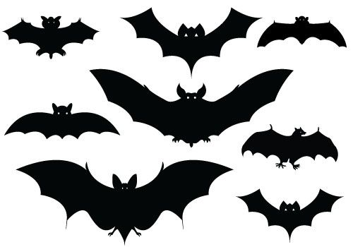 Halloween clipart bat. Bats silhouettes pinteres more