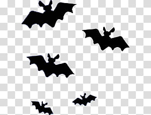 Halloween black bat illustration. Bats clipart five