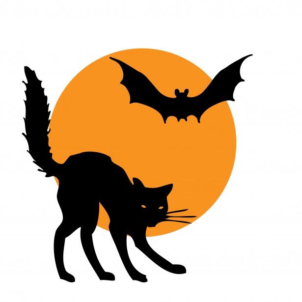 Cat bat free stock. Clipart halloween public domain