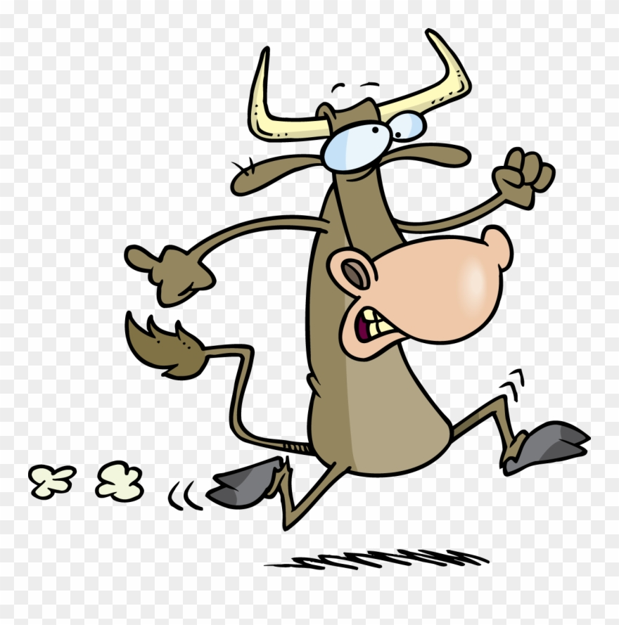 Battle clipart bull run. Cow of png download