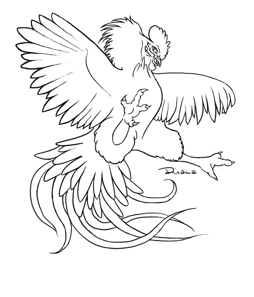 Rooster fight at getdrawings. Battle clipart drawing
