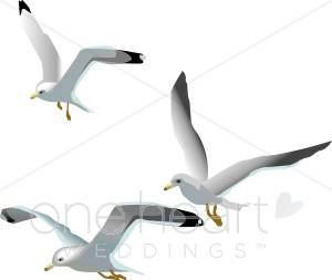 Seagulls wedding. Beach clipart bird