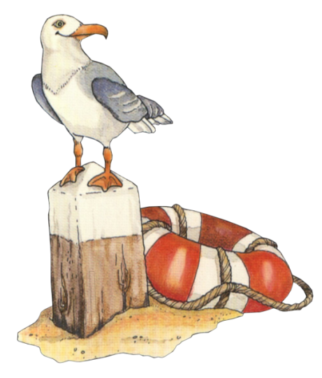 Tubes suite craft ideas. Beach clipart bird