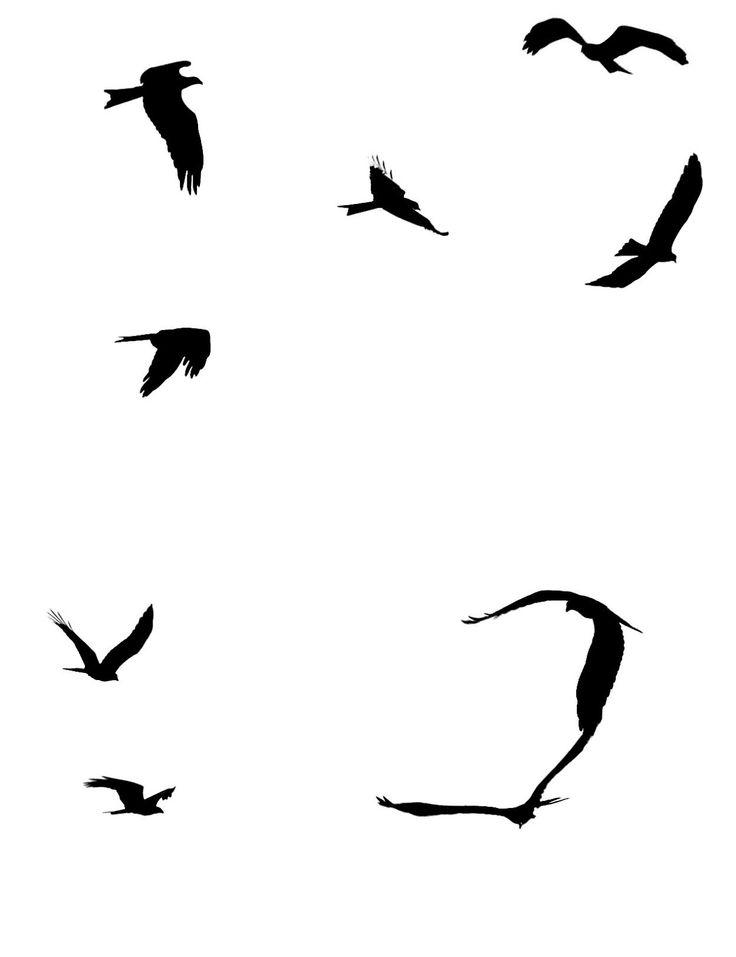Beach clipart bird. Ocean silhouette at getdrawings