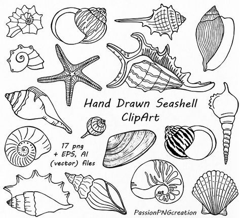 Free on dumielauxepices net. Beach clipart drawing