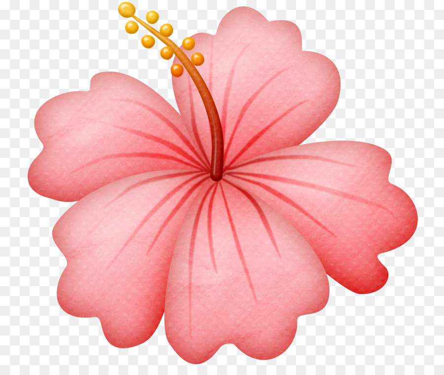 Pink cartoon hibiscus . Beach clipart flower