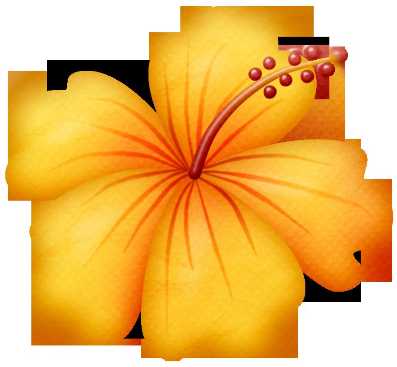 beach clipart flower