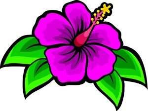 Beach clipart flower. Drawing of hibiscus clip