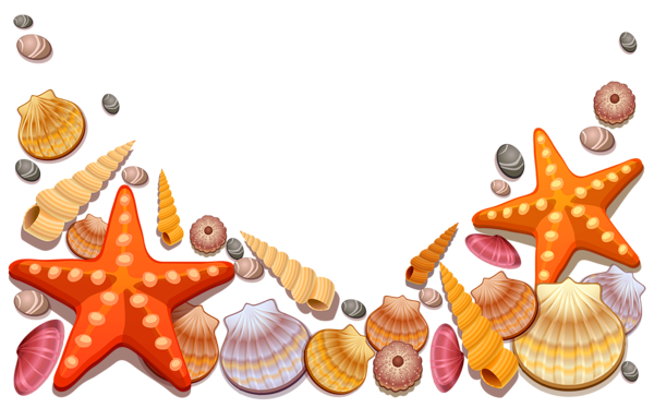 Beach clipart seashell. Pin by f on