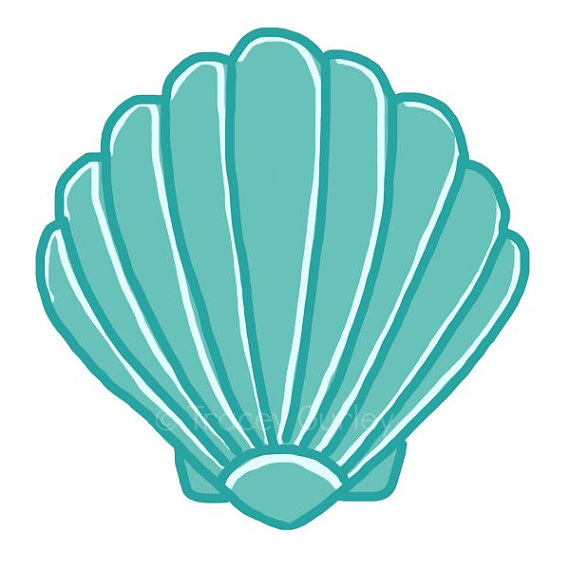 Turquoise scallop original art. Clam clipart shell beach