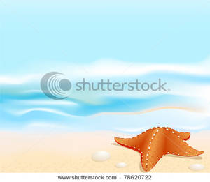 Beach clipart starfish. Picture an orange on