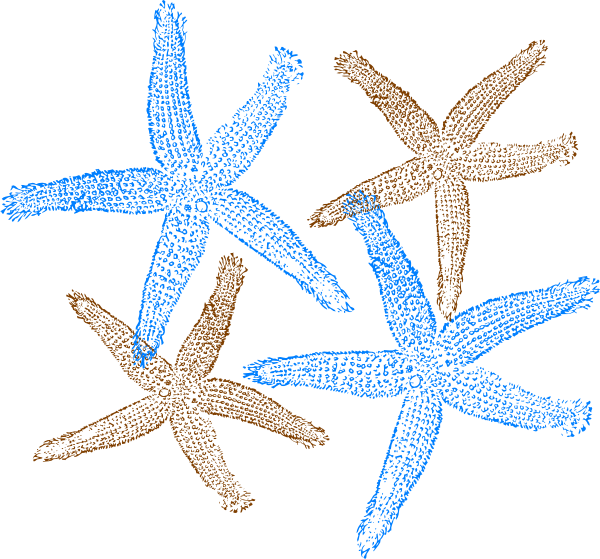 Starfish prints clip art. Clipart free beach