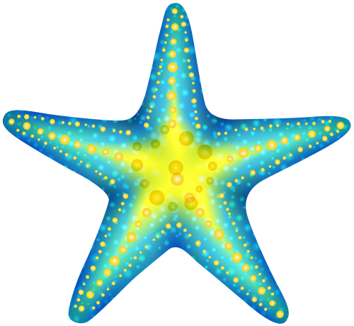 Blue png clip art. 3 clipart starfish