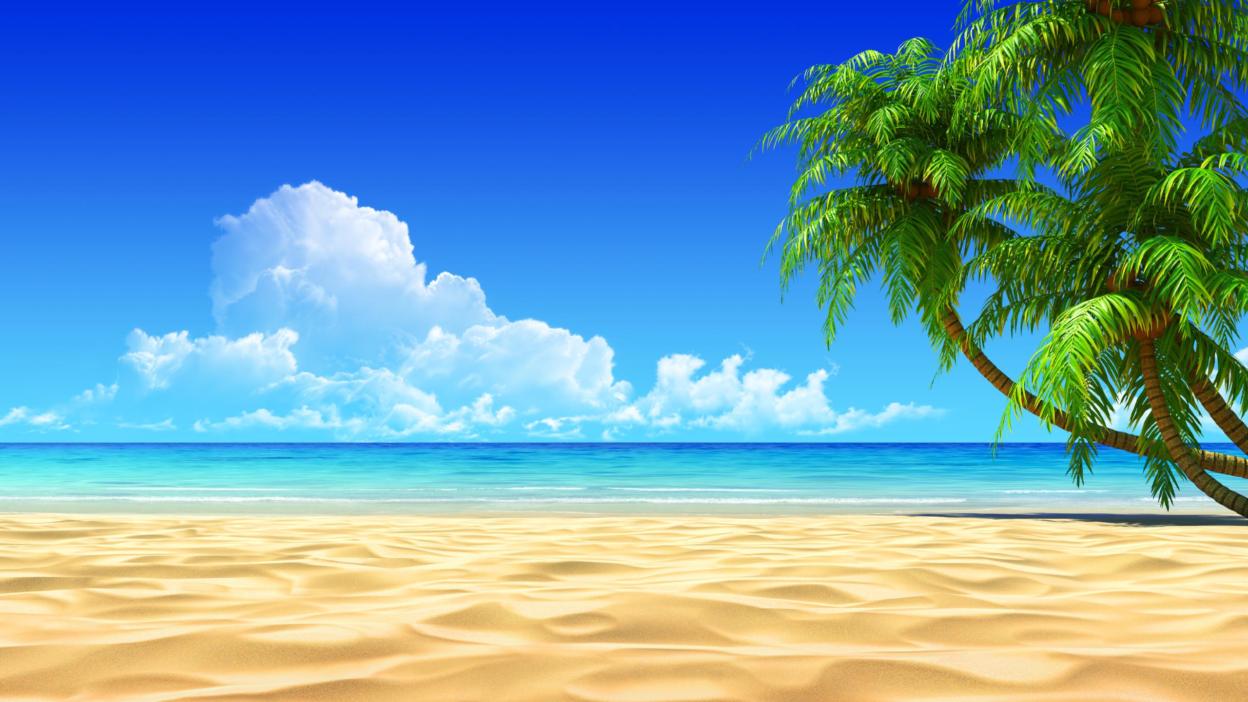 Island hd wallpaper background. Beach clipart tropical beach
