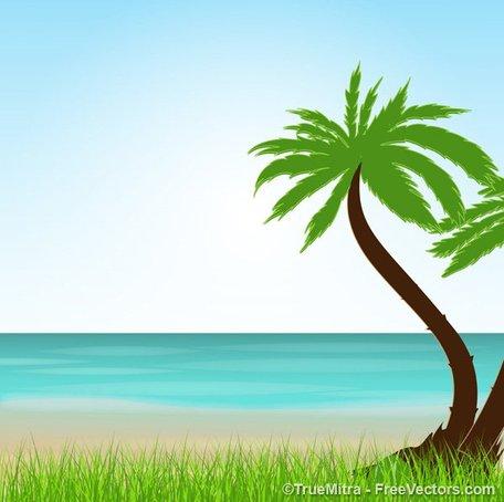 Free cliparts download clip. Beach clipart tropical beach