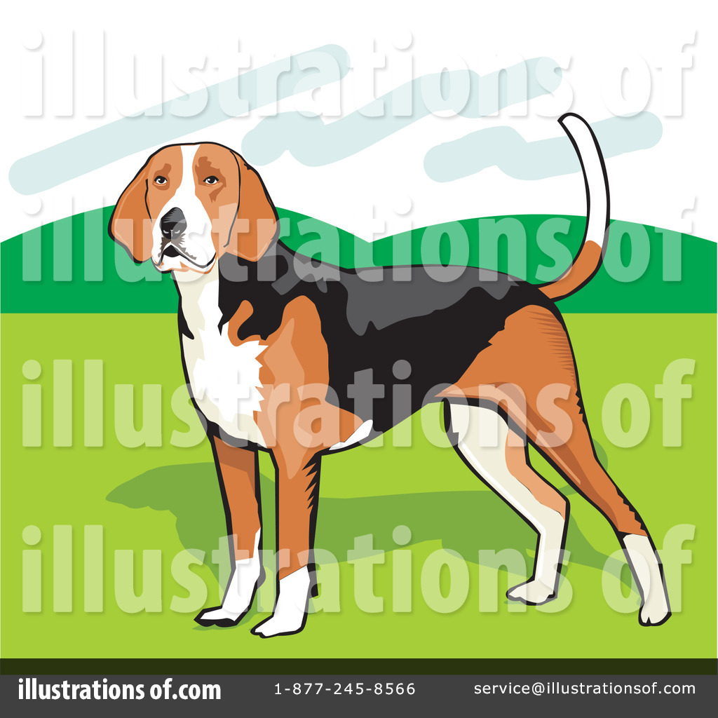 Beagle clipart american foxhound. Illustration by david rey