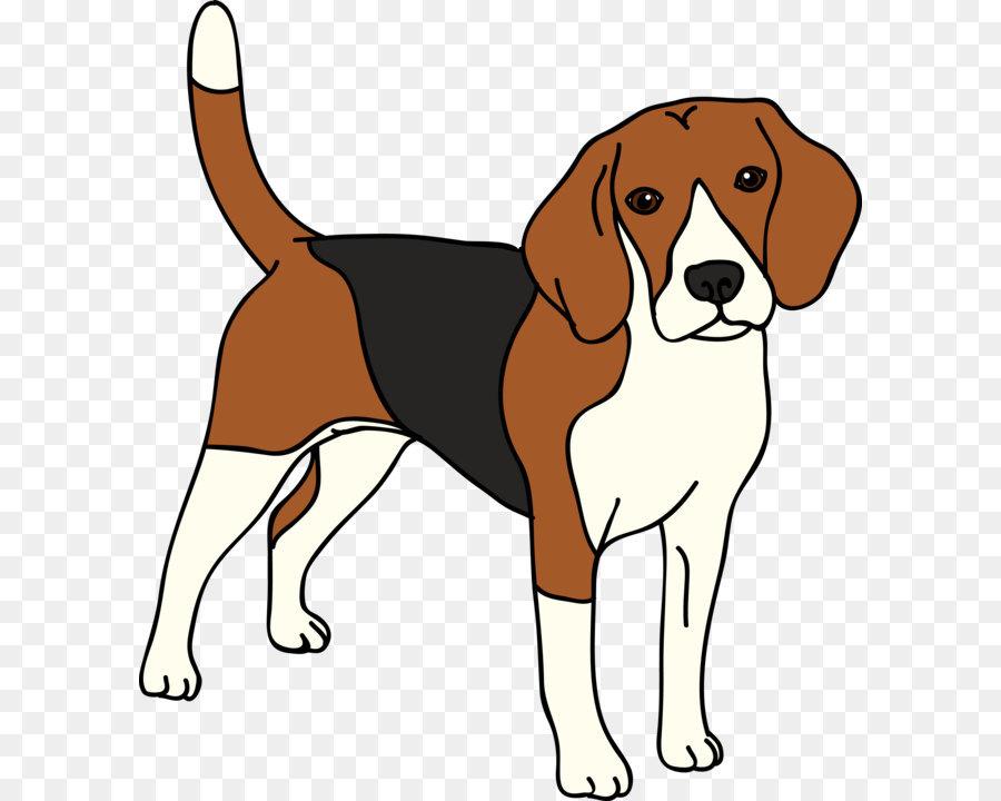 English harrier finnish hound. Beagle clipart american foxhound