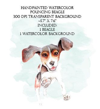 Hand painted watercolor pouncing. Beagle clipart baby puppy