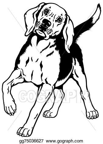 Beagle clipart beagle line. Eps vector black white