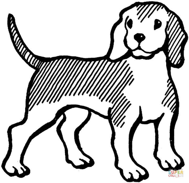 Beagle clipart black and white. Dog coloring page free