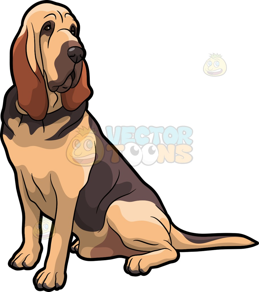 Beagle clipart bloodhound. Image group a fierce