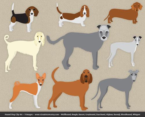 Beagle clipart bloodhound. Dog clip art hound