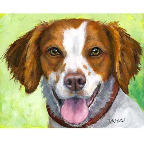 best images on. Beagle clipart brittany spaniel