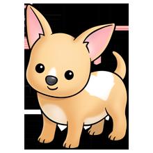 Chihuahua dog lots of. Beagle clipart chiwawa