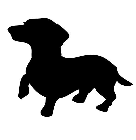 Beagle clipart chiweenie. Our dachshund constantly does
