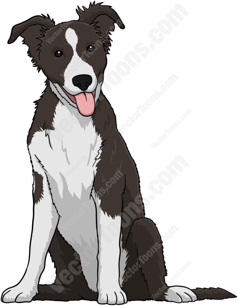 Sketch of border black. Beagle clipart collie puppy