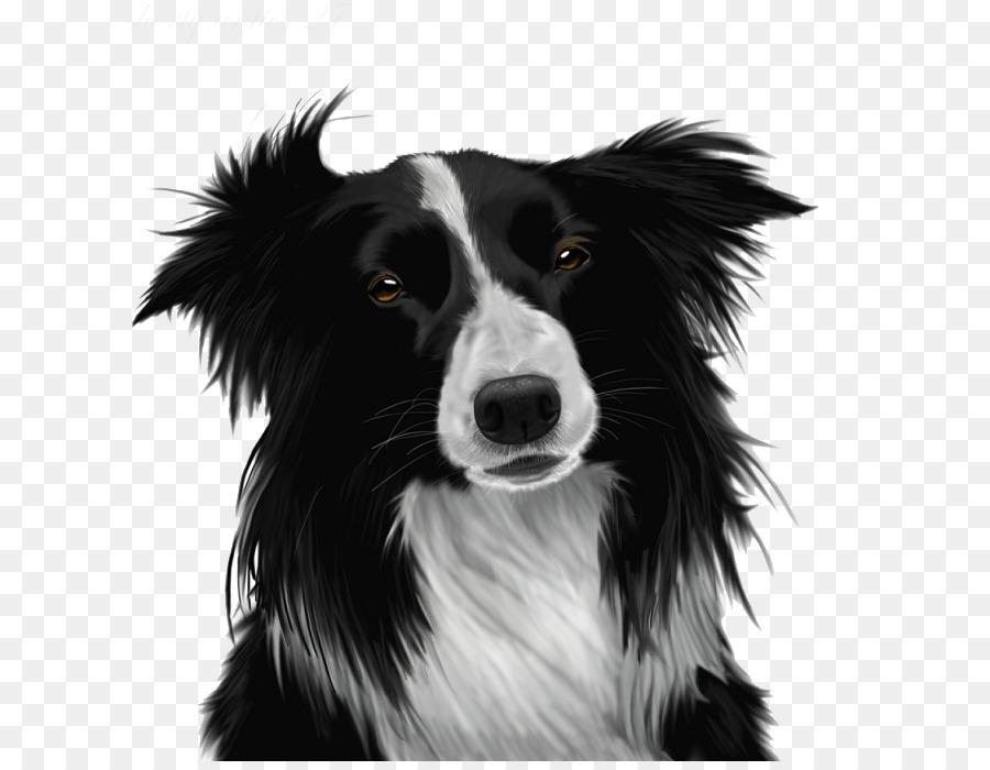 Beagle clipart collie puppy. Border clip art png