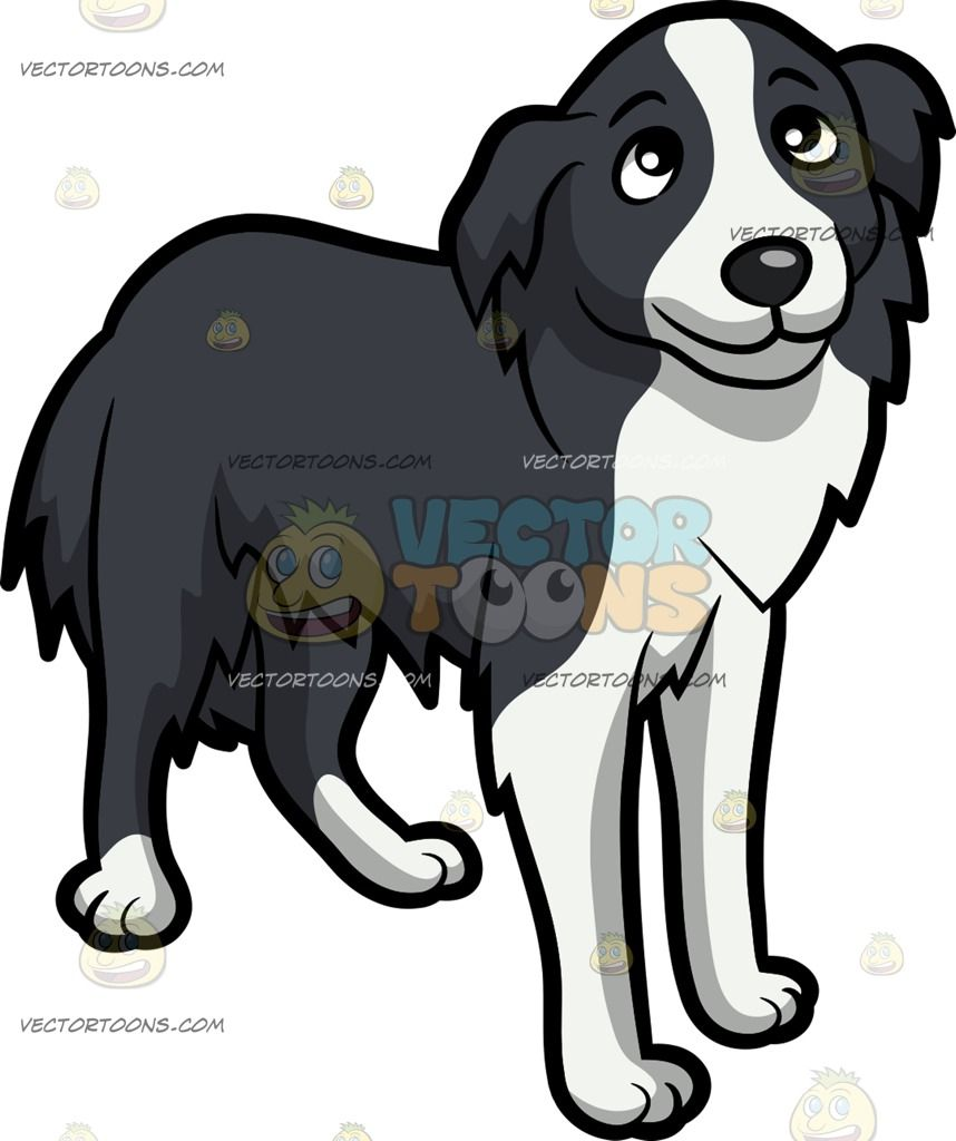 A beautiful border puppies. Beagle clipart collie puppy