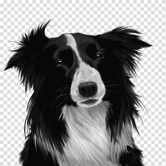 Beagle clipart collie puppy. Border transparent background