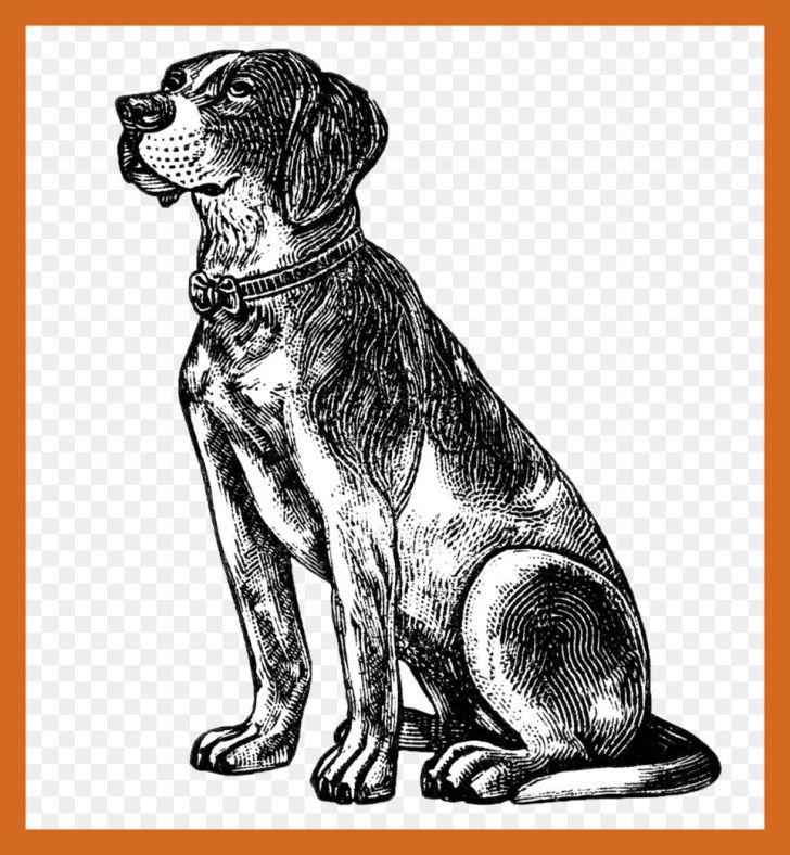 Of cute dog hilarious. Beagle clipart cutedog