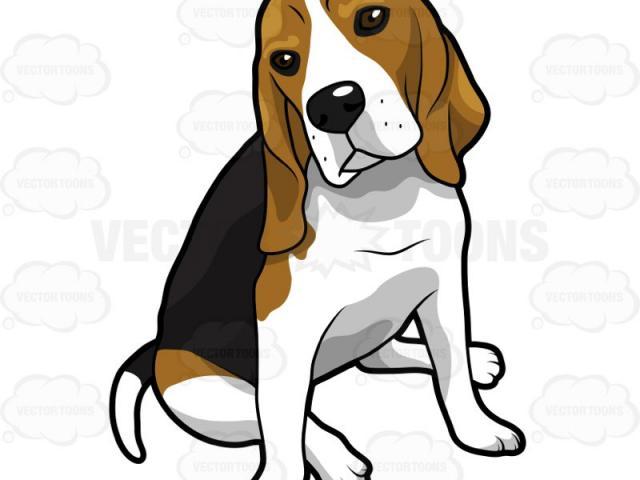 Beagle clipart dogl.  realistic free clip