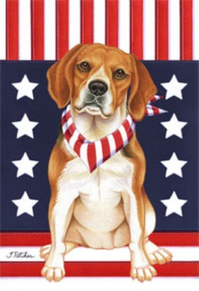 best images on. Beagle clipart dry dog