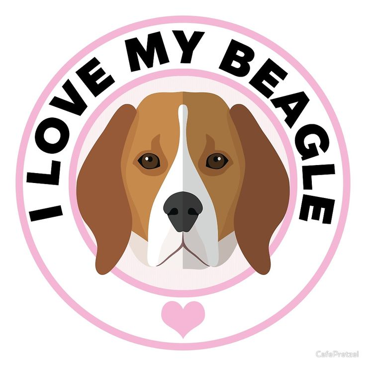 best lover gifts. Beagle clipart dry dog