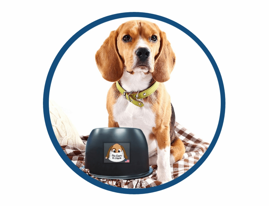 Beagle clipart dry dog. Png black and white