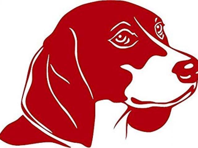 Beagle clipart head. X free clip art
