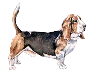 Free pages of public. Beagle clipart hound dog
