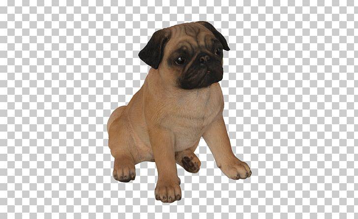 Pug shih tzu boston. Beagle clipart little puppy